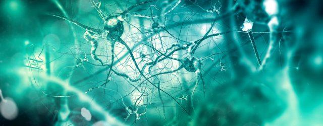 Паркинсон: нацеливание нового препарата замедляет болезнь у крыс