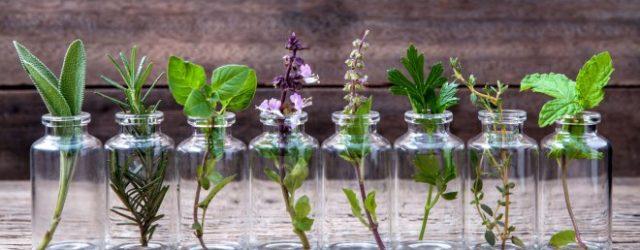 Могут ли эфирные масла лечить ИМП?